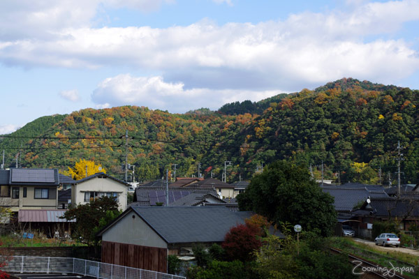 autumn colors in Japan