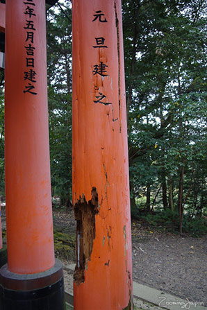Fushimi Inari Shrine in Kyoto