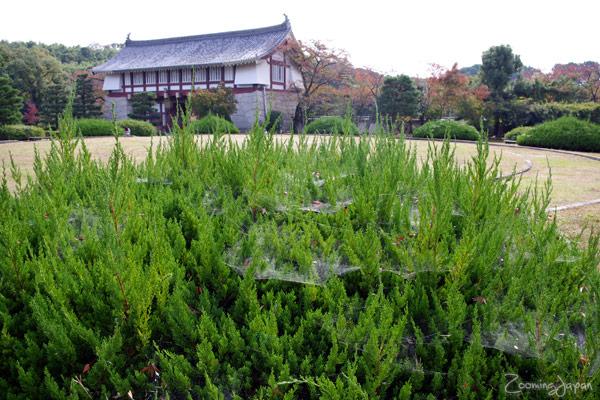 Momoyama Castle in Kyoto