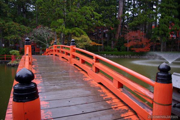 mount koya autumn colors
