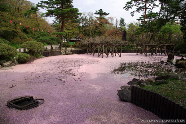 Spring in Japan: Castle Park in Akita