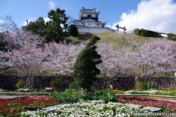 Spring in Japan: Kakegawa Castle