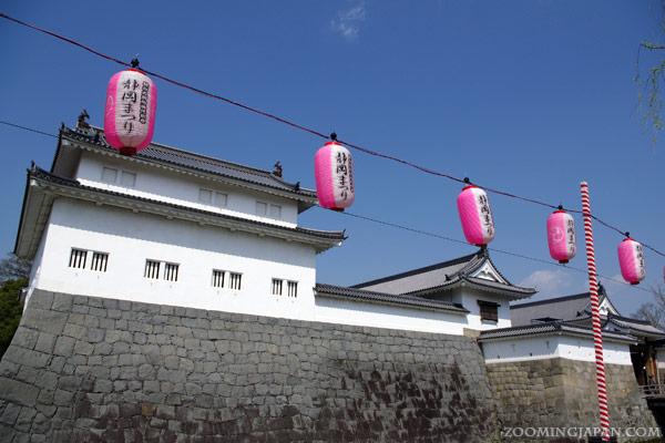 Spring in Japan: Shunpu Castle, Shizuoka