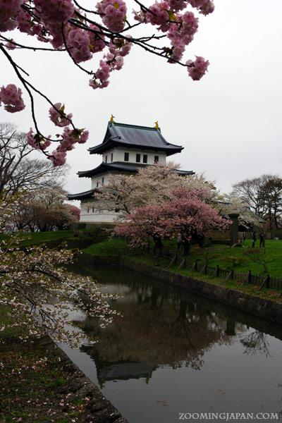 Spring in Japan: Matsumae Castle, Hokkaido