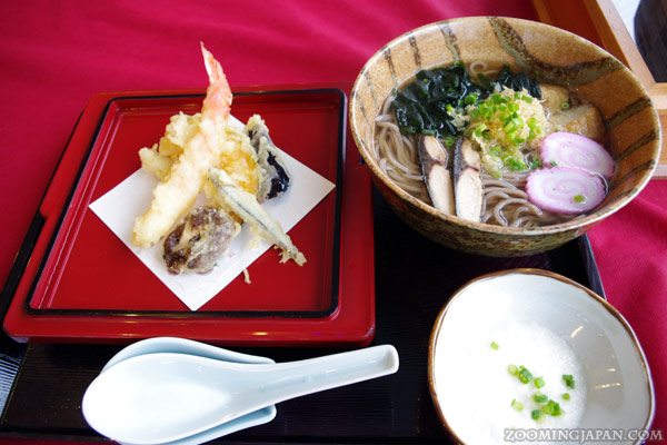Yakushima Shiratani Unsuikyo