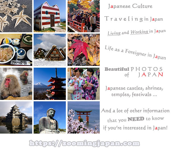 About Zooming Japan