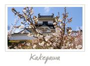 Kakegawa Castle in Shizuoka, 掛川城