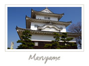 Marugame Castle in Kagawa, 丸亀城