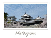 Matsuyama Castle in Ehime, 伊予松山城