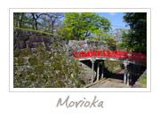 Morioka Castle Ruins in Iwate Prefecture, 盛岡城