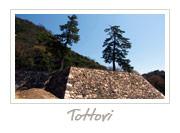 Tottori Castle Ruins, 鳥取城