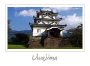 Uwajima Castle in Okayama, 津山城