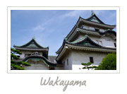 Wakayama Castle, 和歌山城