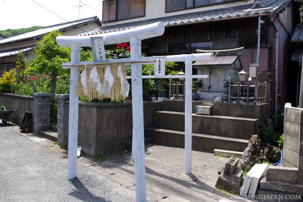 Ainoshima Cat Island Japan