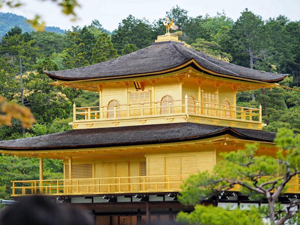 Reasons to visit Kyoto
