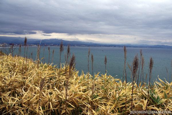Hakodate City Cape Tachimachi