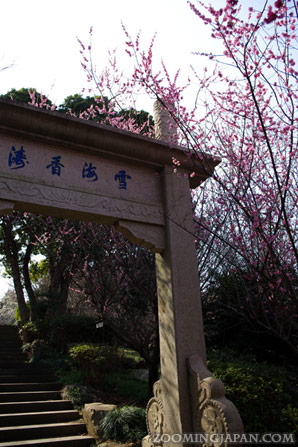 Sekai no Ume Koen Mitsu World Plum Park