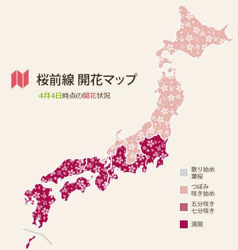 Cherry Blossom Season Vocabulary