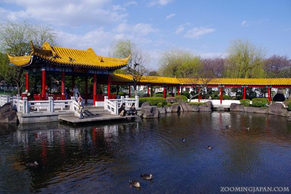 Chinese Garden Shinshu-en in Kawasaki Daishi Park