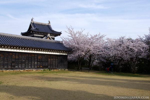 Spring Festival at Koriyama Castle in Nara