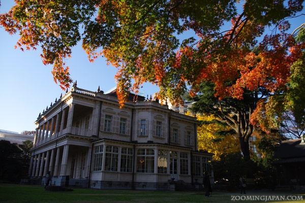autumn colors in Tokyo - best spots