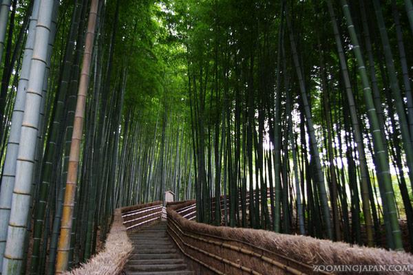 Adashino Nenbutsuji Temple in Kyoto