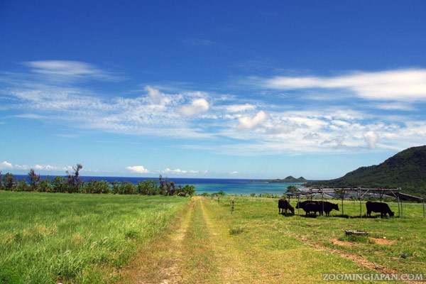 Yaeyama Islands, Okinawa
