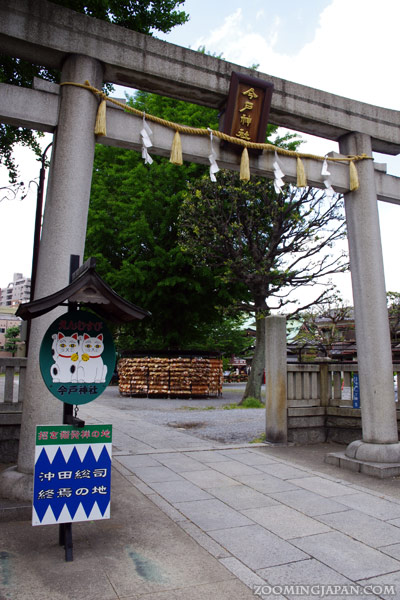 Cat Places in Japan