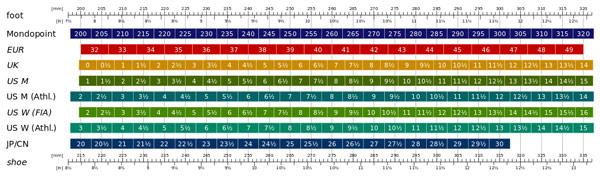 International shoe size chart from Wikipedia