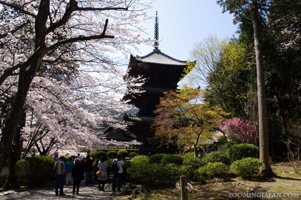 Miidera Temple Otsu