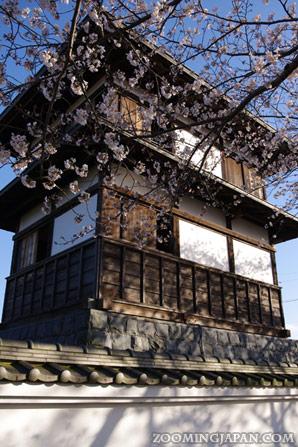 Tanaka Castle in Fujieda, Shizuoka