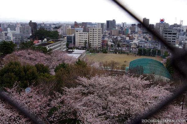 Hamamatsu Castle Shizuoka