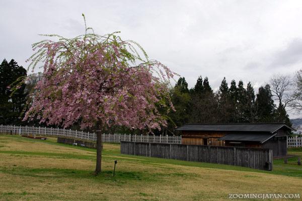 Ne Castle in Hachinohe