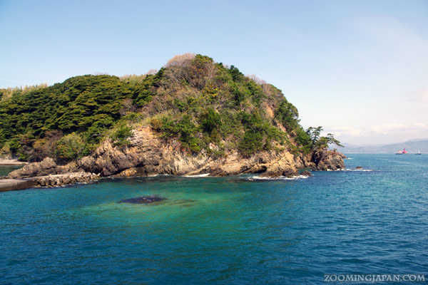 Tashirojima, Cat Island