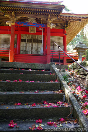 Tashirojima, Cat Island, Odomari