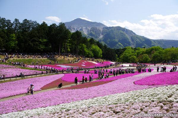 peak travel season in japan