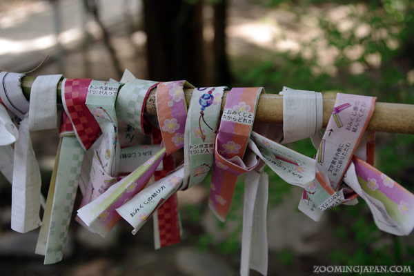 Omikuji found at Chuusonji Temple in Hiraizumi