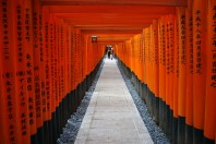 Red Gates of Fushimi Inari Shrine in Kyoto