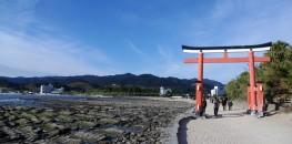 Aoshima Shrine in Miyazaki