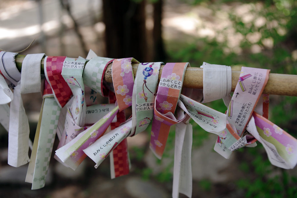 Omikuji of a shrine in Hiraizumi