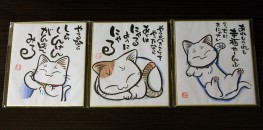 Yufuin Cat Items