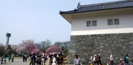 Yamagata Castle (Ninomaru)