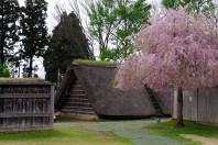 Ne Castle in Hachinohe, Aomori Prefecture