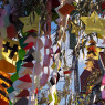 Tanabata Festival Japan