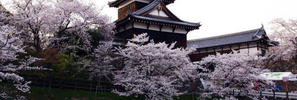 Yamato Koriyama Castle