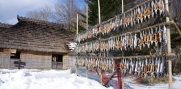 Shiraoi Ainu Museum in Hokkaido