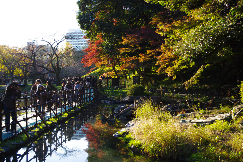 9 Spots To Enjoy Autumn Colors In Tokyo Zooming Japan