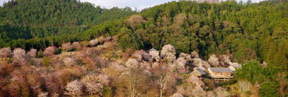 Mount Yoshino in Nara